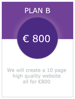 Picture of plan b 10 page website for 800 euro