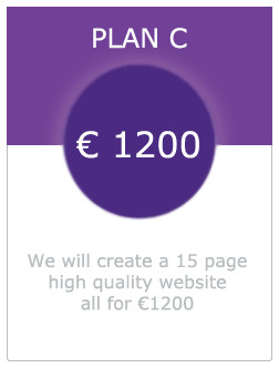 Picture of plan c 15 page website for 1200 euro in dundalk co. louth